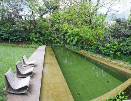 Piscina Natural Formal