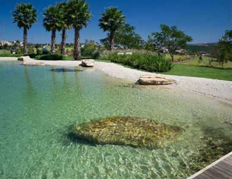 Natural Pool at the Beach